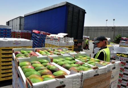 Перевозка фруктов и овощей