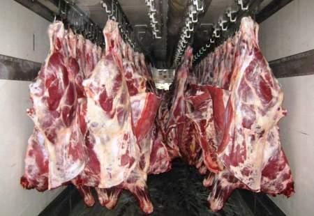 Перевозка мяса в тушах